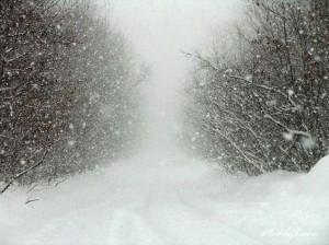 snowstorm-1