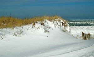 Cape Cod Winter