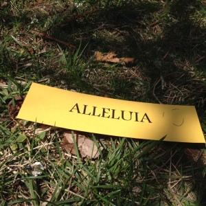 allelulia